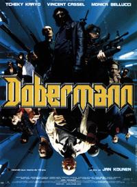 Bild Dobermann