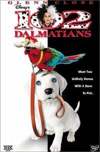 Bild 102 Dalmatians