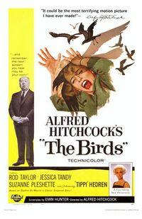 image The Birds