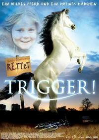 Bild Trigger