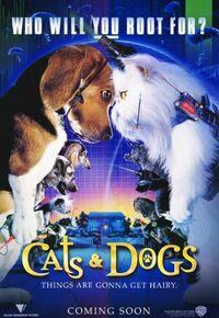 Bild Cats & Dogs