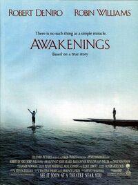 Bild Awakenings