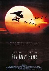 Bild Fly Away Home