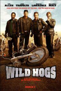 Bild Wild Hogs