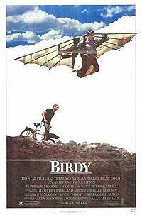 Bild Birdy