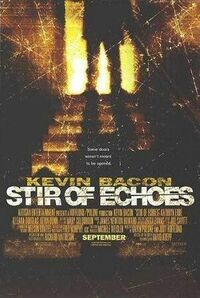Bild Stir of Echoes