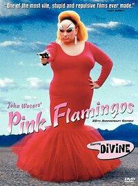 Bild Pink Flamingos