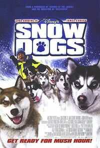 Bild Snow Dogs