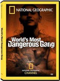 Bild World's Most Dangerous Gang