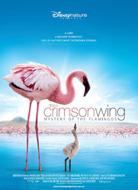 Bild The Crimson Wing: Mystery of the Flamingos