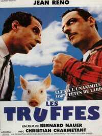 Bild Les Truffes