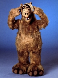 Bild Alf