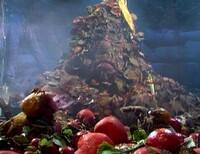 Bild The Great Radish Famine