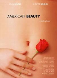 Bild American Beauty