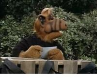 Alf > Funeral for a Friend