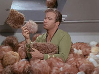 image The Trouble With Tribbles