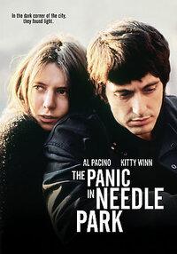 Bild The Panic in Needle Park