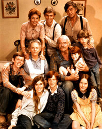 Bild The Waltons