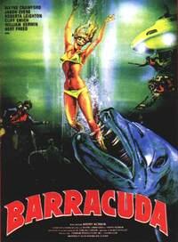 Bild Barracuda