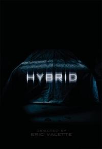Bild Hybrid
