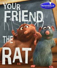 Bild Your Friend The Rat