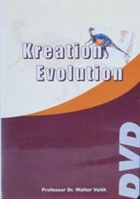 Bild Kreation - Evolution