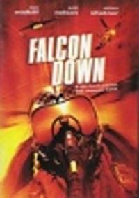 Bild Falcon Down
