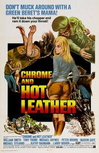 image Chrome and Hot Leather