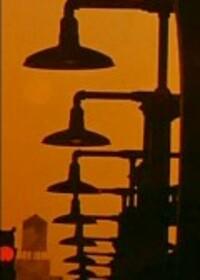 Bild Daybreak Express