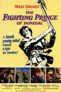 Bild The Fighting Prince of Donegal