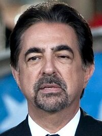 Bild Joe Mantegna