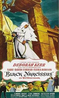 Bild Black Narcissus