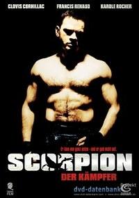 Bild Scorpion