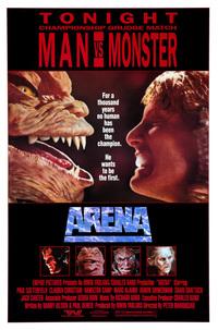 Bild Arena