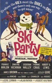 Bild Ski Party