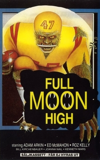 Bild Full Moon High