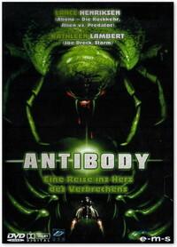 Bild Antibody