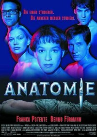 Bild Anatomie
