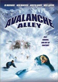 Bild Avalanche Alley