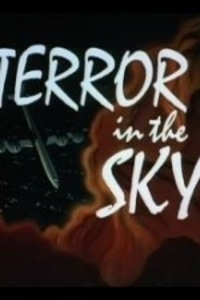 Bild Terror in the Sky