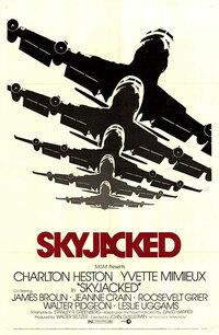 Bild Skyjacked