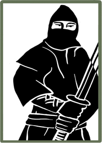 Bild Ninja Film