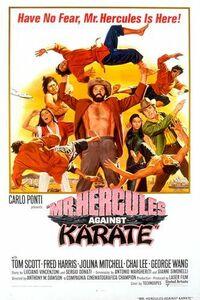 Bild Schiaffoni e karate