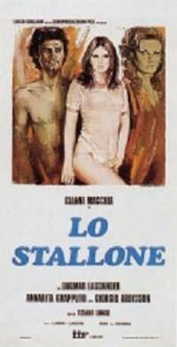 image Lo stallone