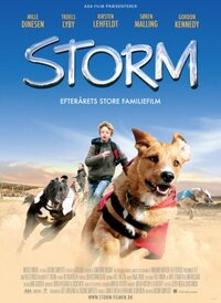 Bild Storm