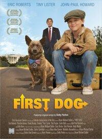Bild First Dog