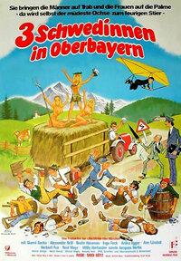 Bild Drei Schwedinnen in Oberbayern