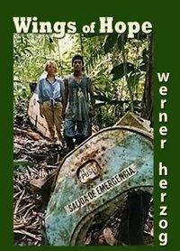 Bild Julianes Sturz in den Dschungel