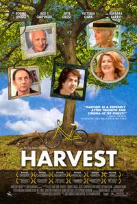 Bild Harvest