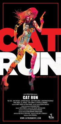 image Cat Run